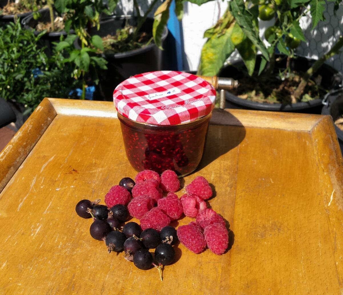 Ernte verarbeiten: selbstgemachte Himbeeren-Jostabeeren-Marmelade